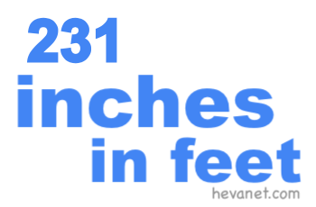 231 inches in feet