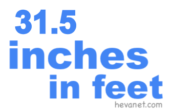 31.5 inches in feet